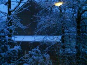 Uitzicht uit mijn raam